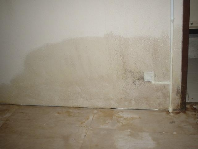 Admiral Building Systems Wall Dampness Treatment